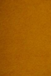 116 Butternut Squash Woolfelt