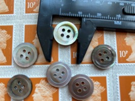 03-2140 RIng Edged Mussel Shell Shirt  Button x 10