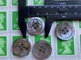 03-2139 Mussel shell button x 1