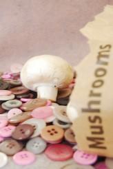 Blushing Mushroom Theme Bag
